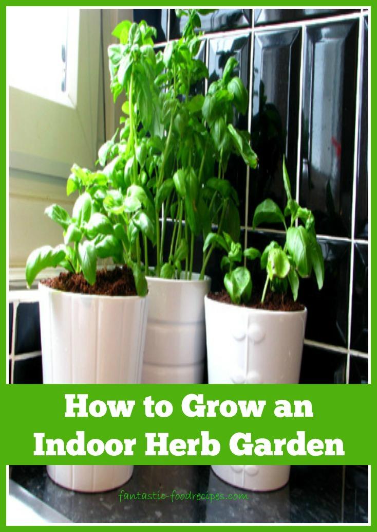 How to grow an indoor herb garden 2 fantastic food recipes for How to grow an indoor herb garden