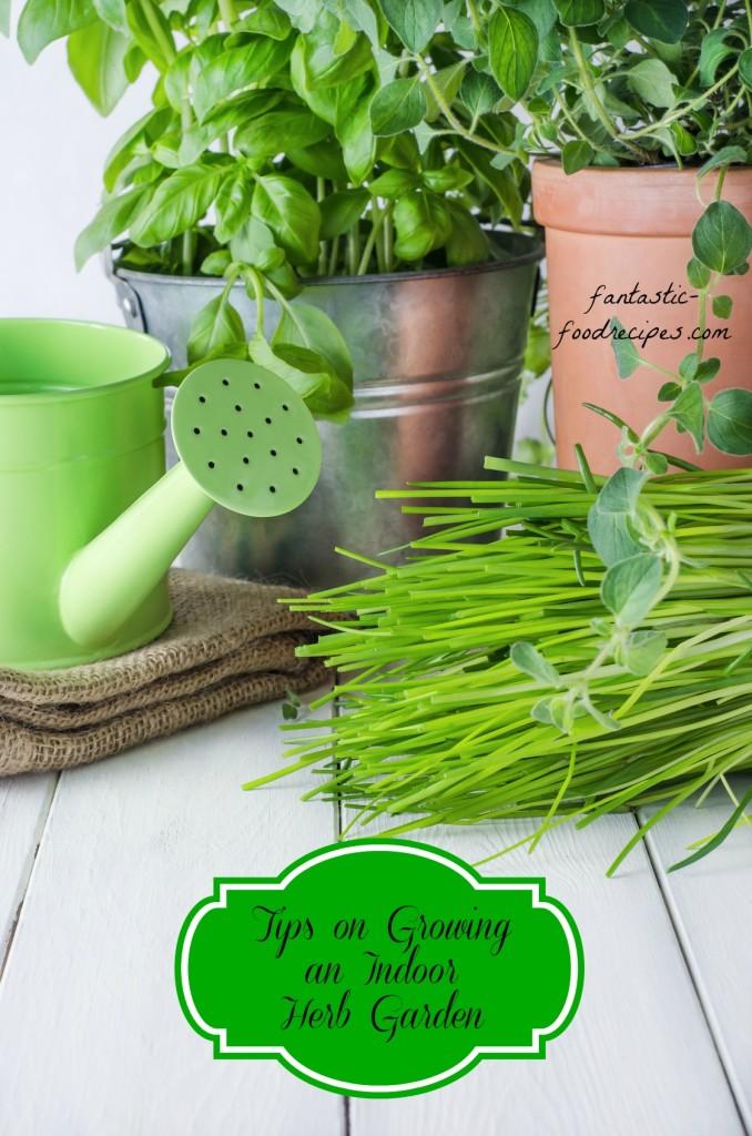 Tips on growing an indoor herb garden fantastic food recipes for How to grow an indoor herb garden