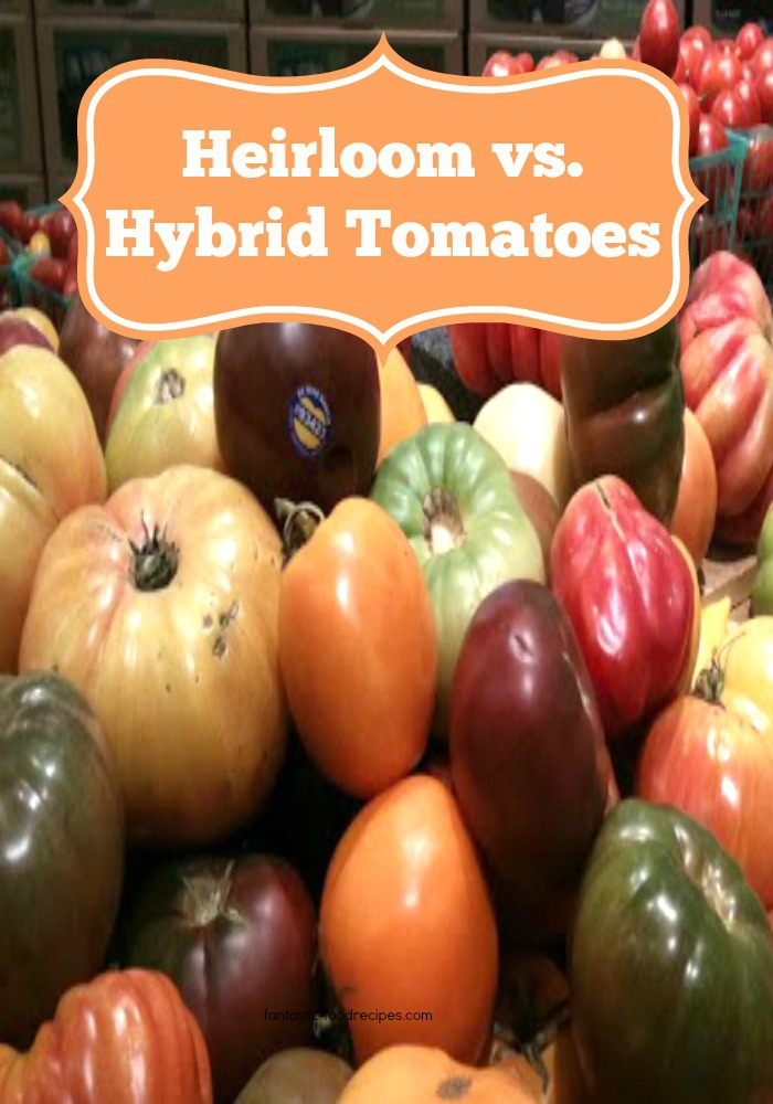Heirloom vs Hybrid Tomatoes1