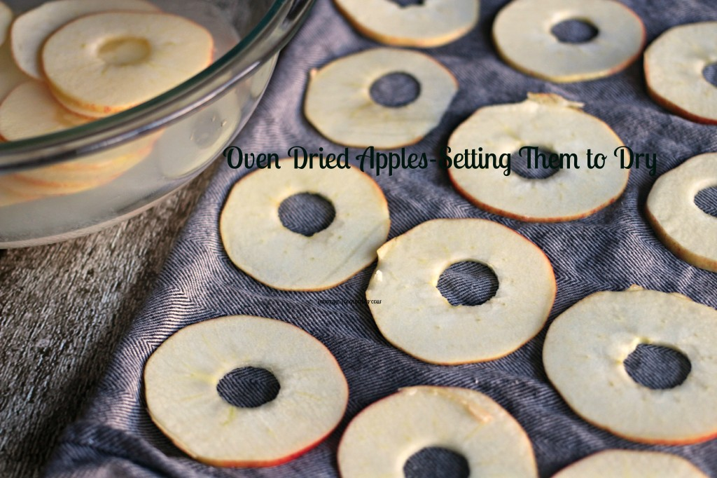 Oven Dried Apples-Setting Them to Dry