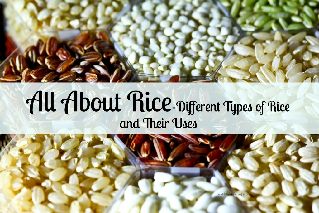 All About Rice- Different Types of Rice and Their Uses