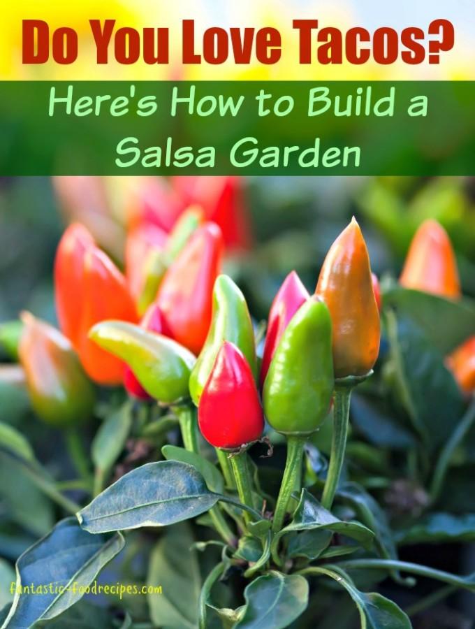 Learn How to Build a Salsa Garden