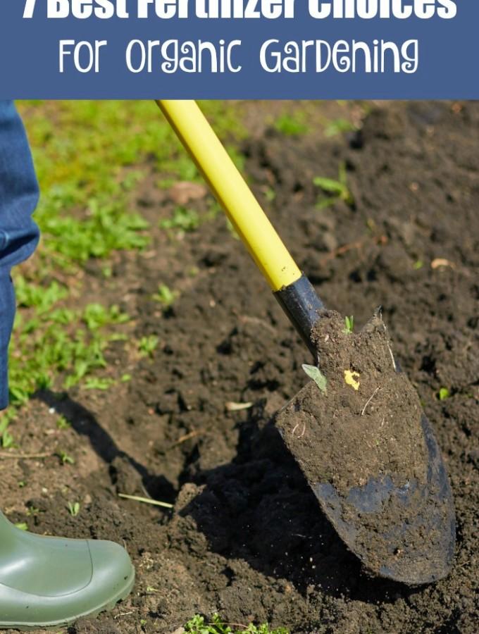 7 Best Fertilizers for Organic Gardening