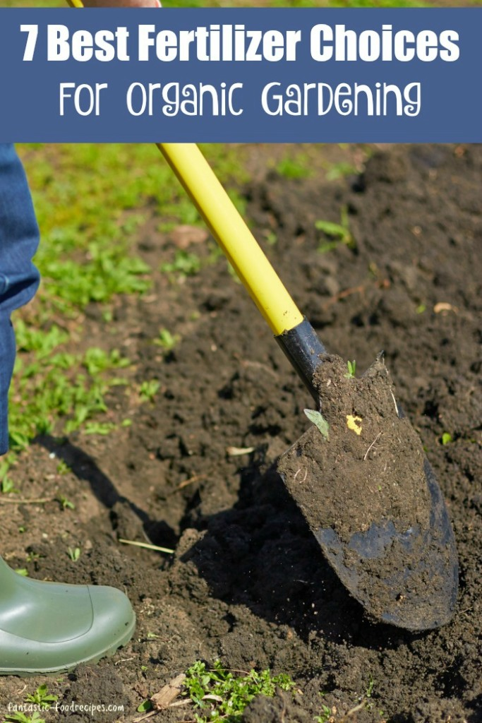 7 Best Fertilizer Choices For Organic Gardening