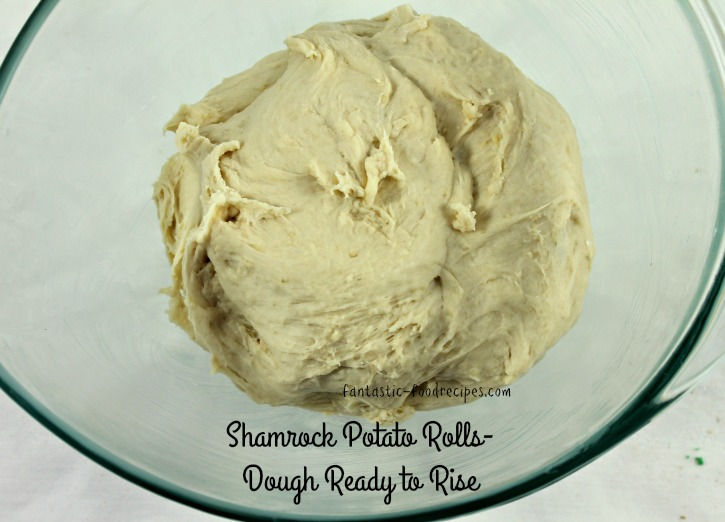 Shamrock Potato Rolls- Dough Ready to Rise